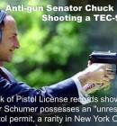 Chuck Schumer New York pistol license