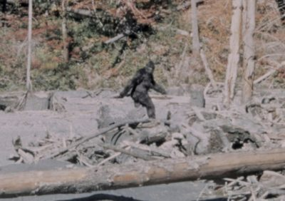 Bigfoot Sighting in Philadelphia Leads to Criminal Charges